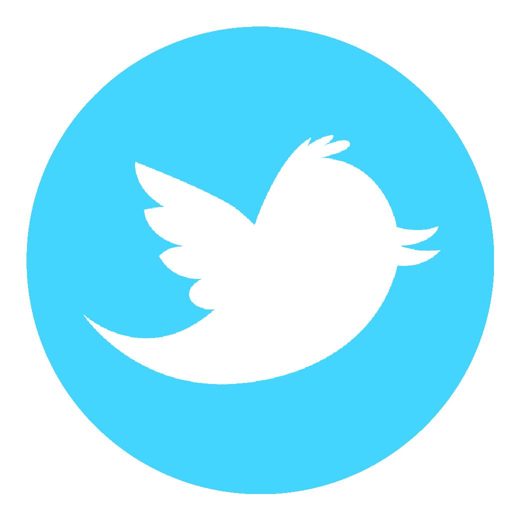 logo-twitter-7ece055bf9e64dbd230b6284c6bc7dd5